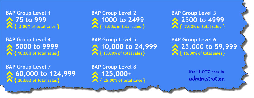 BAP Group Levels