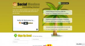 Social Monkee Review – Build Link or Kill Rank?